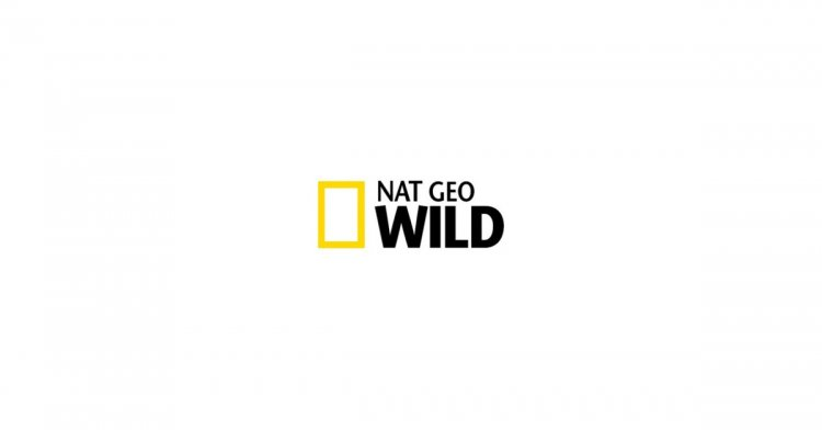 Nat Geo WILD and Sun Valley Film Festival Launch Seventh Annual Wild to Inspire Short Film Contest to Celebrate the 50th Anniversary of Earth Day