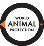 Protecting Animals Imperative as Super Cyclone Amphan makes landfall