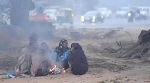 Cold wave to revive in Rajasthan from tomorrow: Met dept